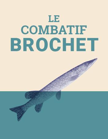 Le combatif brochet