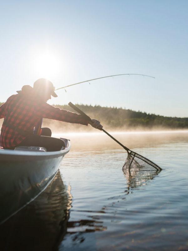 Un pêcheur sort un poisson de l'eau à l'aide de son filet.