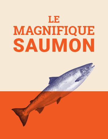 Le magnifique saumon