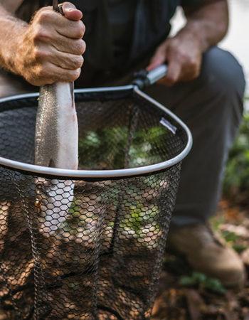 Un pêcheur sort un poisson fraîchement pêché d'une épuisette.